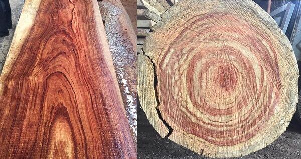 Gỗ hương vân là gì? Giá gỗ hương vân bao nhiêu?